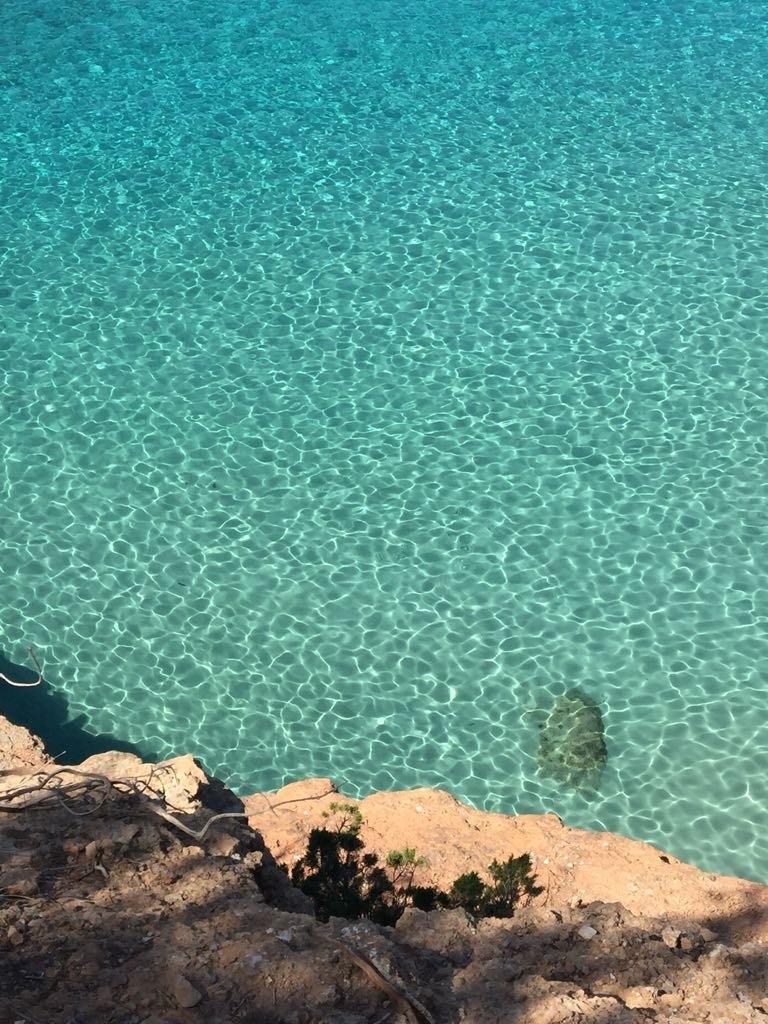 vacances à Ibiza en famille