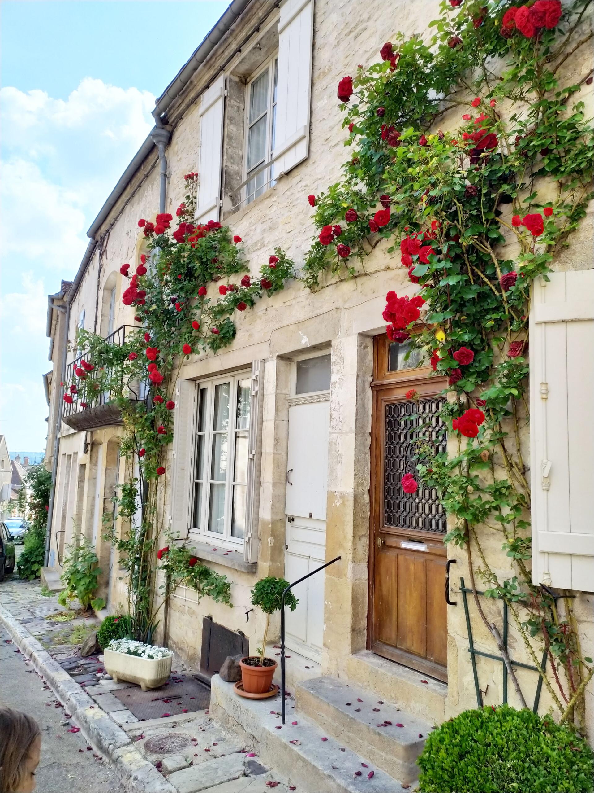 découvrir Vézelay en famille