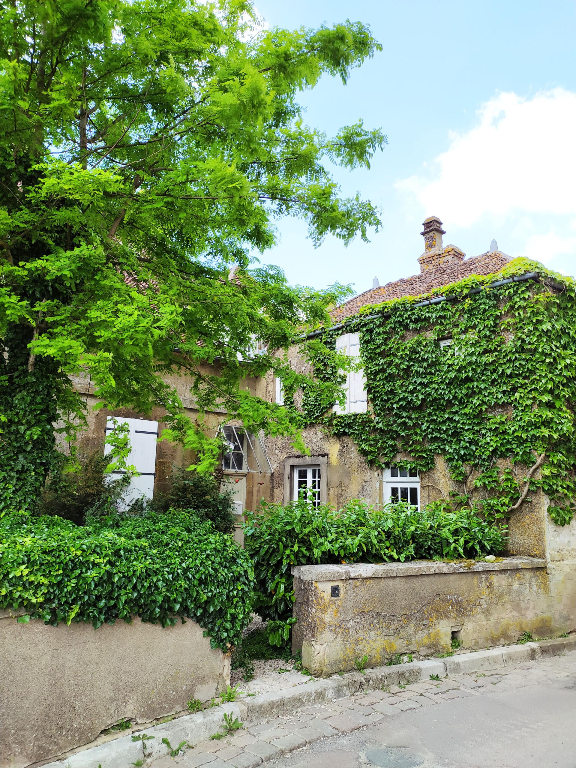 maison typique Vézelay